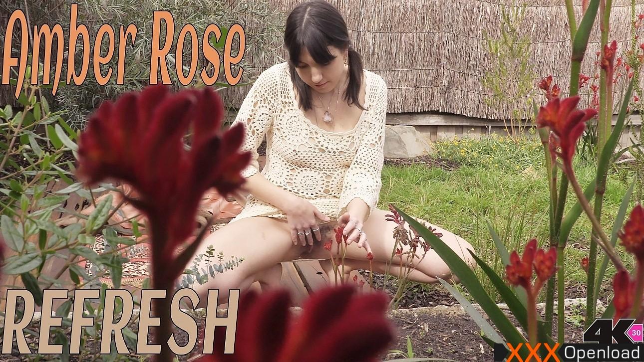 Amber Rose Film Porno amber rose – refresh girlsoutwest 2017 amber rose hairy